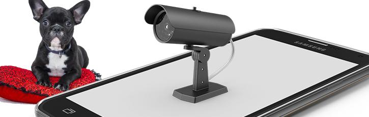 """不要スマホでIoT """"監視カメラ""""アプリの有益性と恐怖"""