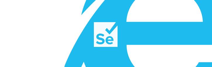 SeleniumでInternet Explorer11を動かす方法