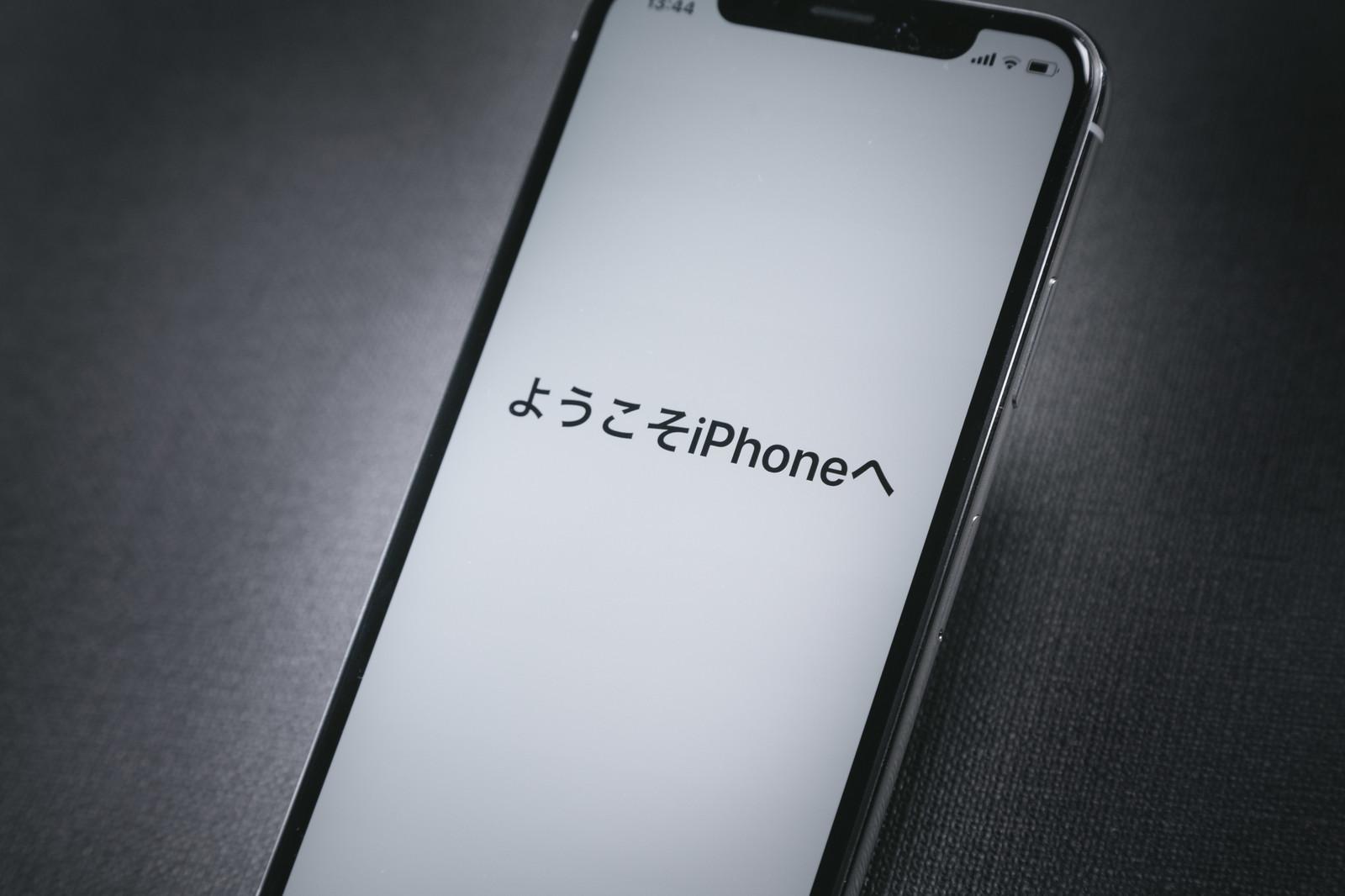 iPhonexIMGL6220_TP_V
