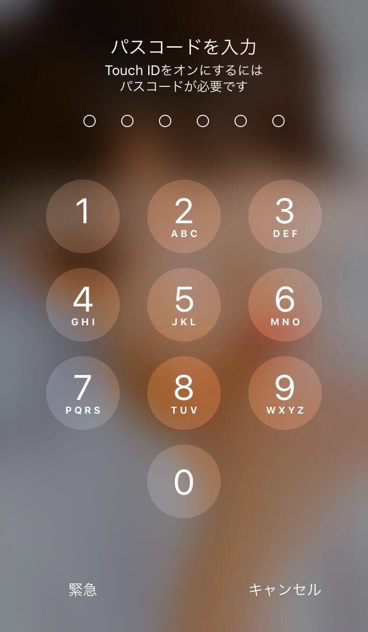 iOSのアップデート4