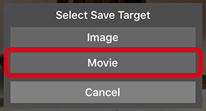 保存対象の選択で「Movie」をタップ