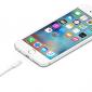iPhoneの純正ケーブルが断線!交換にかかる費用と非正規品のおすすめ