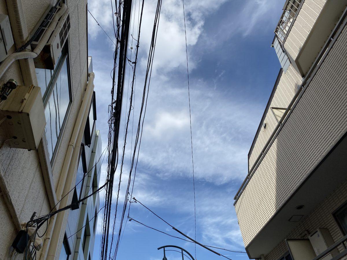 iPhone11Pro撮影画像