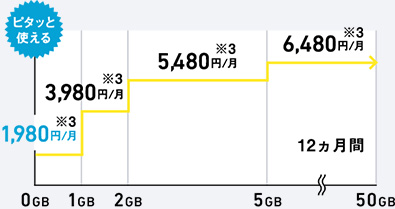 Softbank Fee
