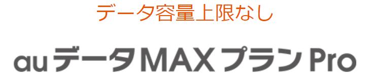 auデータMAXプランPro