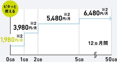 ミニモンスター利用料金1年目