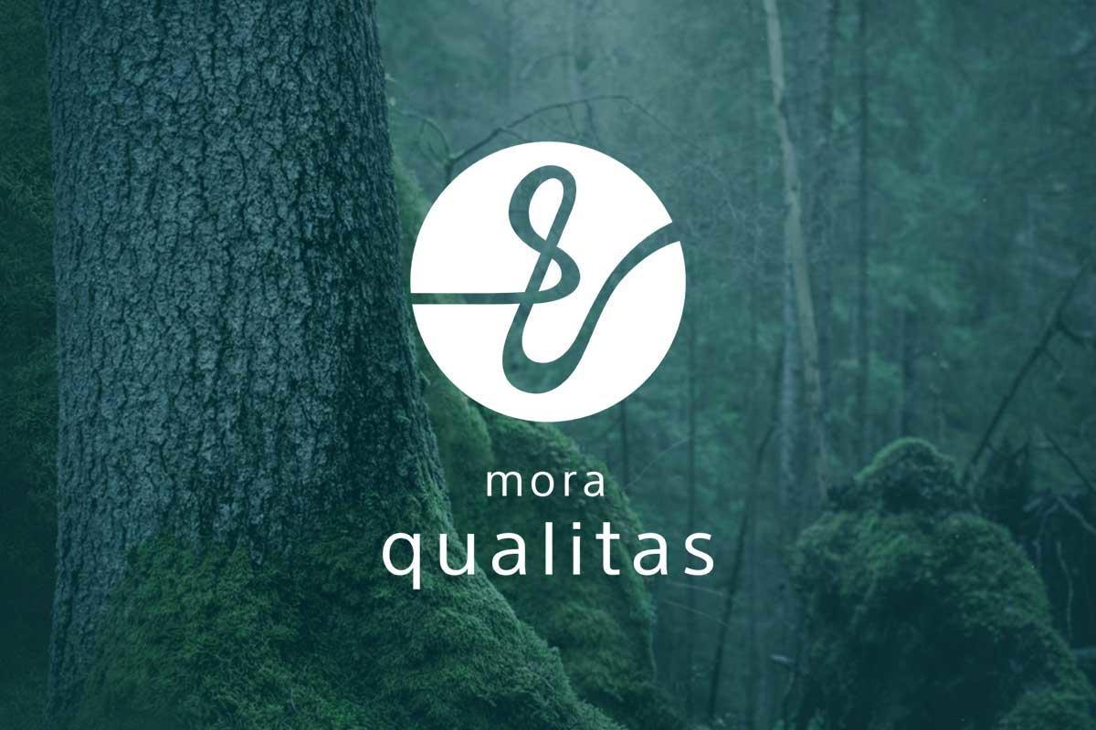 ハイレゾ対応ストリーミングサービス「モーラ・クオリタス」