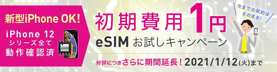 初期1円!eSIMお試しキャンペーン