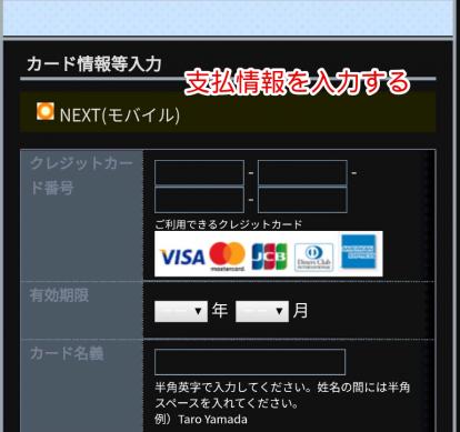 支払情報を入力する