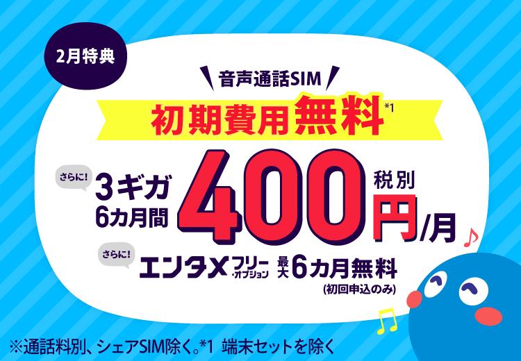 音声通話SIM特典