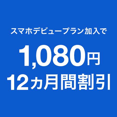 1年おトク割+