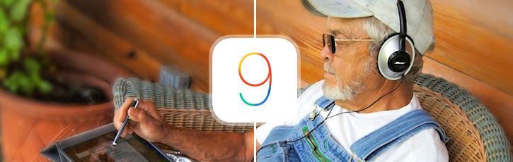 iPadにおけるiOSのインストール・シェア(2015年)