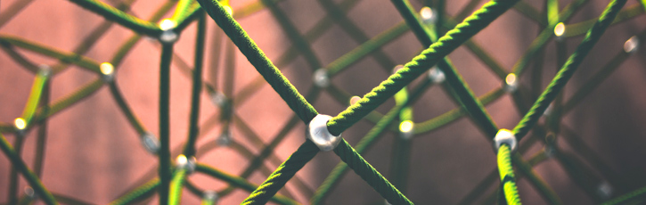 ニューラルネットワークと人間のバイアス(偏り)
