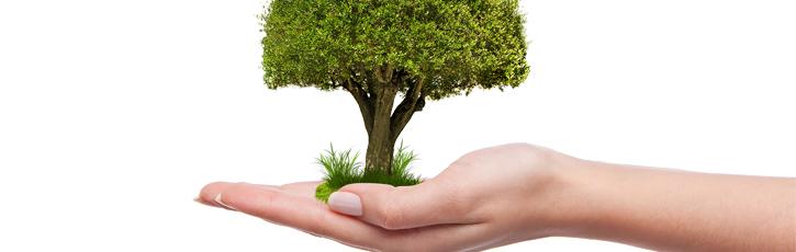 サイトを成長に導く組織を作る「プロセス志向KPI」